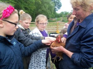Shirley Manors visit to organic farm Swillington_web