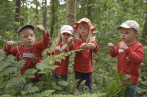 Woodland learning course for children to branch out