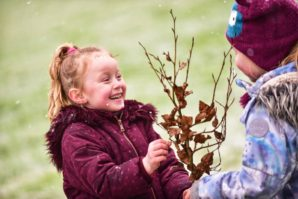 Defra-backed project to plant 1 million trees with schools