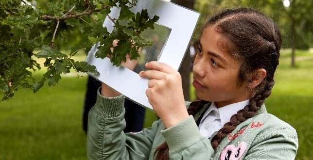 Brand new Natural History Museum schools programme to create  thousands of young urban nature champions